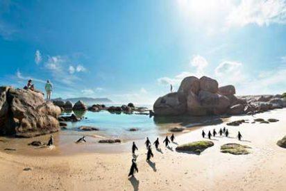 Diez experiencias de turismo familiar en Sudáfrica