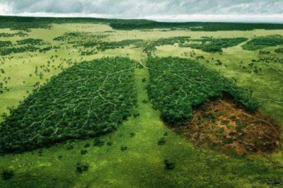 Medio Ambiente: La conciencia eco llega a tu neceser