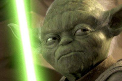El maestro Yoda se 'reencarna' en forma de koala