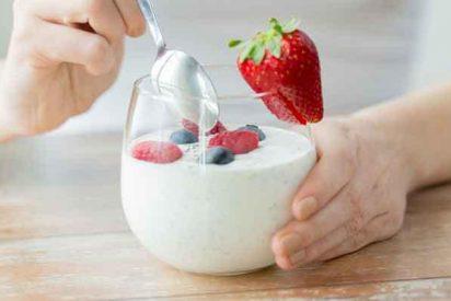 ¿Sabías que el color del yogur de fresa no viene de la fruta, sino de un insecto aplastado del tamaño de una garrapata?