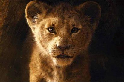 Por fin ha salido el nuevo TRÁILER de 'EL REY LEÓN' y no podemos esperar más para verla