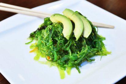 Algas: el superalimento que deberías incorporar a tu dieta