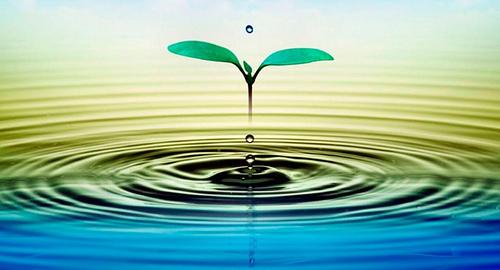 Agua: Los charcos, lugar más propicio para que la vida surgiera en la Tierra