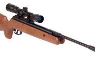 Muere un niño de 12 años jugando con su hermano con una escopeta de perdigones