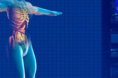 RORy: el receptor que bloquea el crecimiento de células cancerosas y mejora la supervivencia en cáncer de páncreas