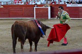 A los toros, en 9 metros cuadrados