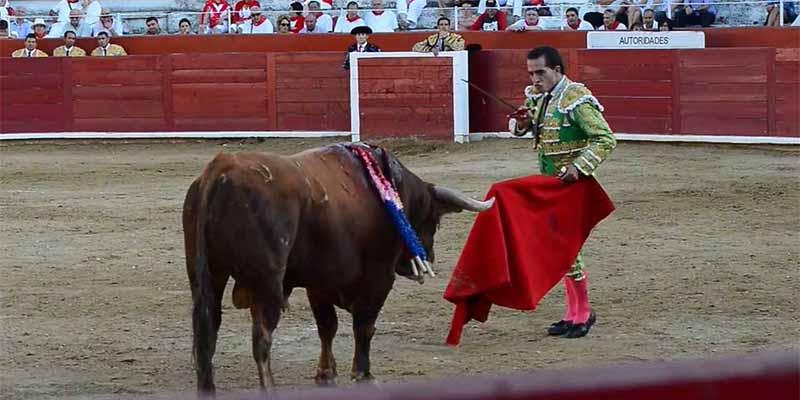 El alcalde de Estella, diriegente de Bildu, convierte la plaza de toros en un 'pipican'