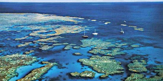 Planeta Tierra: Primer atlas mundial de arrecifes de coral