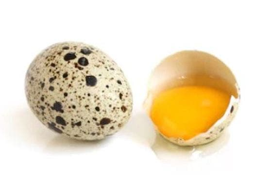 huevo codorniz