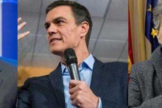 """Un periodista de TVE acusa a Pedro Sánchez de """"humillarlos"""" y masacra al 'soviet' del Consejo de Informativos por """"contribuir"""" a la """"farsa"""" de Rosa María Mateo"""