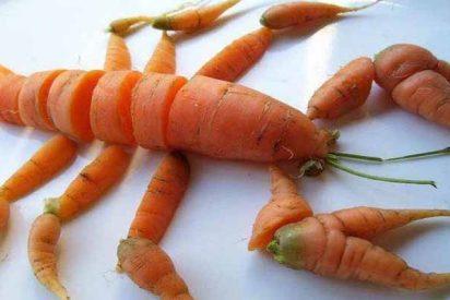 Algunos alimentos de la dieta atlántica previenen el cáncer y el envejecimiento