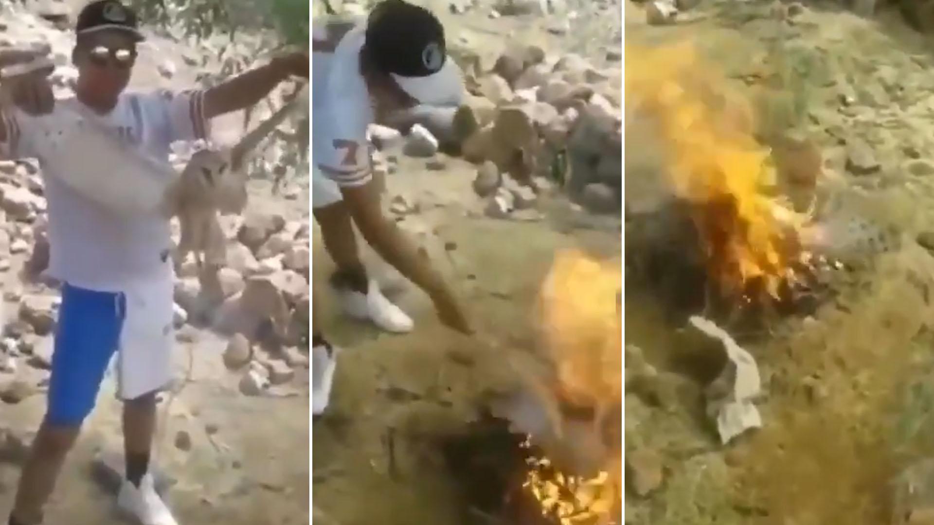 """Vídeo: Dos imbéciles queman viva a lechuza porque pensaron que era una """"bruja"""""""