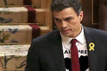 """Salvador Monzó Romero:""""Algodón en rama"""""""