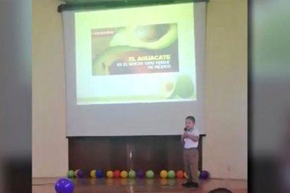 """Un niño de 4 años hace una exposición sobre """"aguacates"""" y se vuelve viral"""