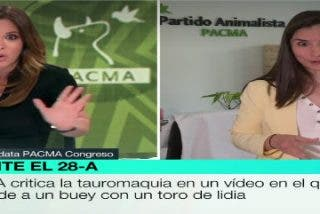 Mamen Mendizabal no consigue sacar de su discurso a la manipuladora animalista de PACMA emperrada en que su buey es un toro