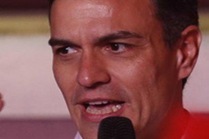 El vídeo viral sobre Pedro Sánchez que verás en bucle, seas del partido que seas