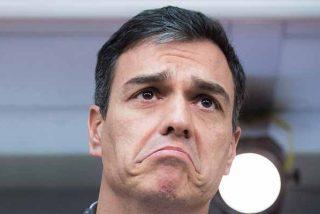 ¡Pánico en Moncloa! El espantajo de los ERE se le volverá a aparecer a Sánchez en cuanto ponga un pie en el Congreso