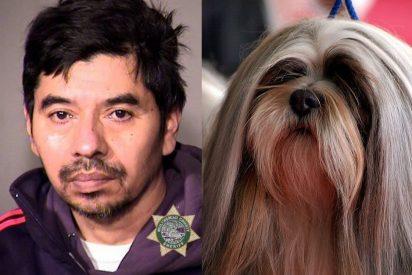Viola a una perra: Él pasará 60 días en la cárcel y el animal fue sacrificado por las lesiones