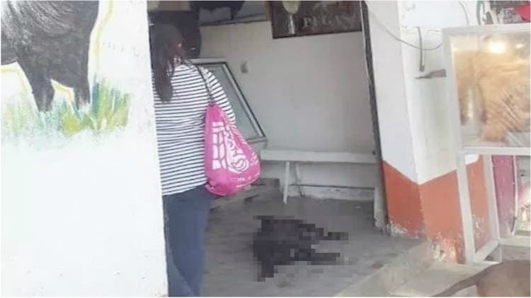 El carnicero despiadado: Mata a perro con su cuchillo porque pidió comida