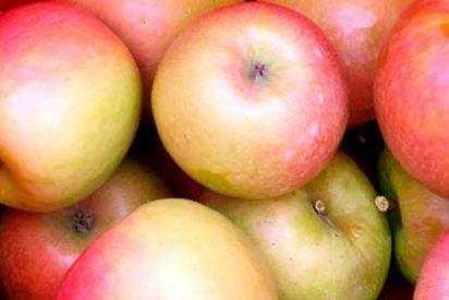 ¿Sabías que una manzana tiene 100 millones de bacterias y ni te imaginas dónde están la mayoría?