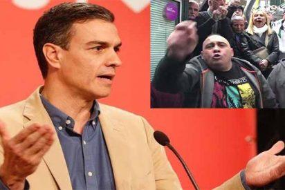 España: Hay fascismo, pero apoya al socialista Pedro Sánchez