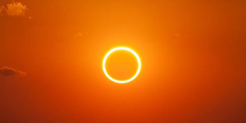 Sol: La melanina podría ser una herramienta eficaz para el diagnóstico y tratamiento de tumores