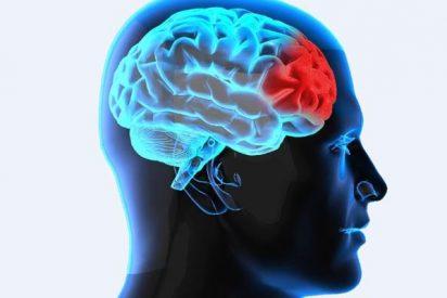 Descubren el biomarcador en el cerebro que indica el riesgo de suicidio
