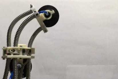 Así es el inquietante nuevo robot sanguijuela que sube por las paredes