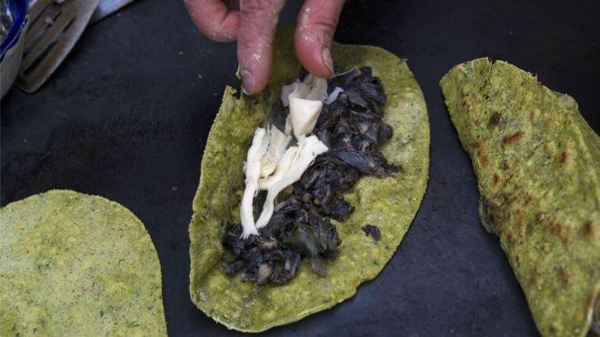 Insólito: Este hongo es un manjar en México y en el resto del mundo una plaga