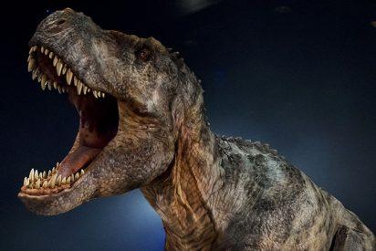 Un dinosaurio tailandés es pariente del T. Rex
