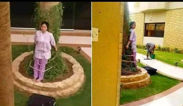 Amarran a una empleada doméstica a un árbol por dejar los muebles bajo el sol