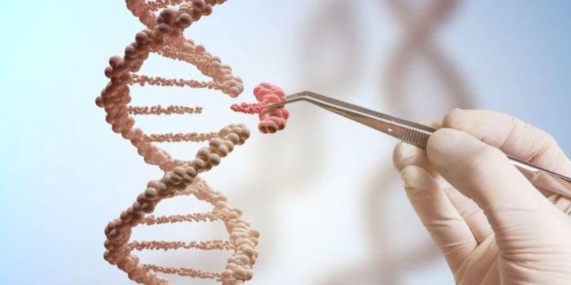Una nueva enfermedad de inmunodeficiencia causada por una mutación genética