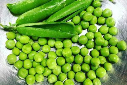 Desayuno con Guisantes: ¿Por qué debería comer legumbres para desayunar?