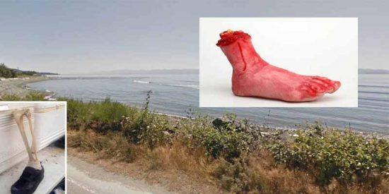 Resuelto el misterio de los pies de muertos que llegan calzados a la costa de Canadá