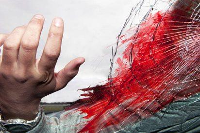 ¡Impactante! Este potente pegamento sella hemorragias incontrolables en segundos