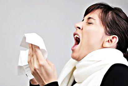 El factor genético tiene un peso del 40% al 70% en la irrupción de las alergias