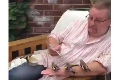 El vídeo de este hombre alimentando a 4 pajaritos arrasa en las redes….