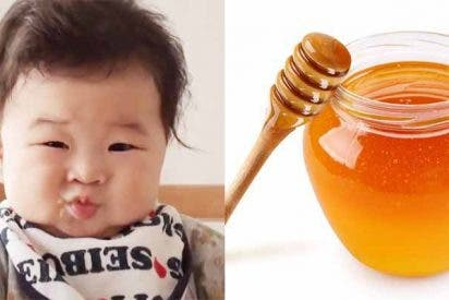 Japón: Muere un bebé de seis meses tras tomar una cucharada de miel