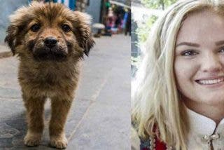 Adopta un cachorro de perro que encontró abandonado en la calle y muere por su mordedura