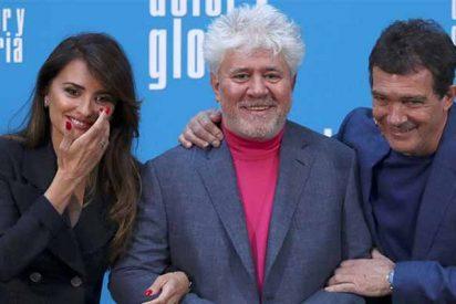 Festival de Cannes: Antonio Banderas alcanza la 'gloria' tras el premio a Mejor Actor