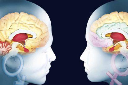 Buscan 'huellas dactilares' de las enfermedades mentales graves en el cerebro