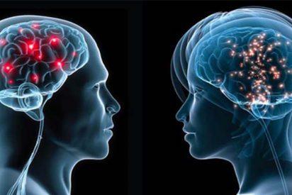 Cerebro: Las neuronas continúan formándose hasta después de los 90 años e incluso en personas con Alzheimer