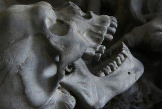 Descubren en Guatemala los esqueletos de una pareja de reyes mayas de hace 1.500 años