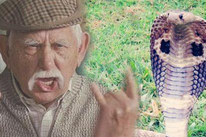 Anciano cabreado ataca y muerde a una peligrosa serpiente