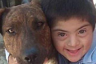 Unos desalmados envenenan al perro guía de un niño con Síndrome de Down