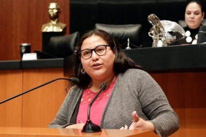 Estalla un libro bomba en el despacho de la senadora mexicana Citlalli Hernández