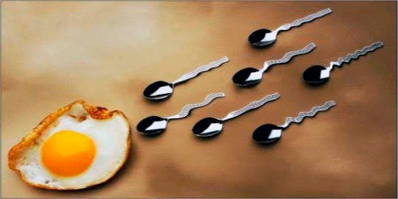 Maternidad: la fecundación in vitro no tiene ningún efecto sobre el desarrollo infantil