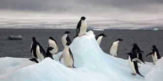 Lotería: el premio Gordo llega hasta la Antártida y le cae a un militar español