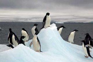 Lotería: el premio Gordo llega hasta la Antártida y la cae también as un militar