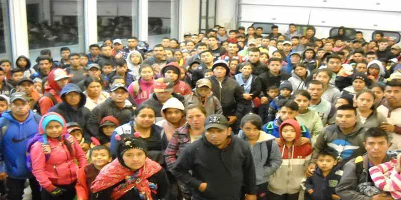 EEUU: 'La Migra' captura a más de 600 hispanos indocumentados en Nuevo México